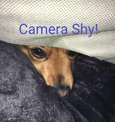 Becca (camera shy)